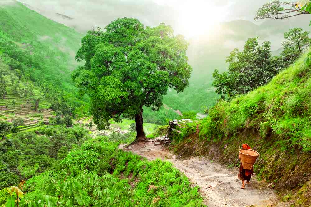 The climate of Nepal In Different Geographical Regions